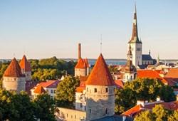 Taste of Tallinn